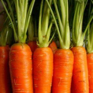 Manna Organics Bread: Whole Grain Sourdough Bread (& VIDEO with Recipe for Crostini with Roasted Carrot Hummus)