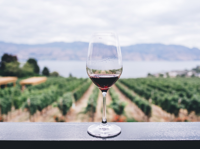 is wine healthy