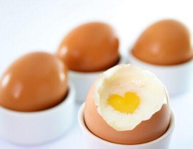 eating clean eggs