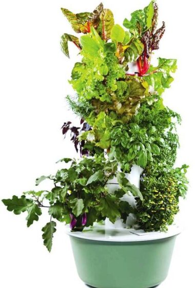 Tower Garden Container Vegetable Gardening