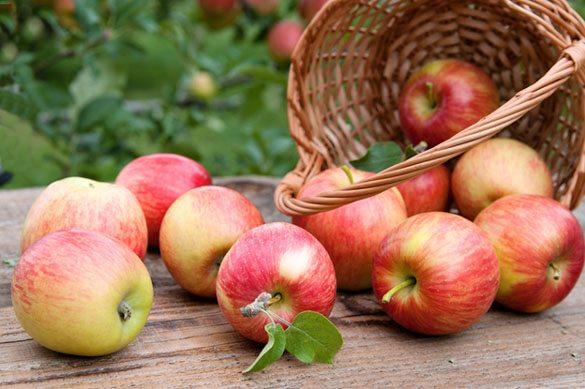 Six Healthy Apple Recipes Including Superfood Apple Crisp