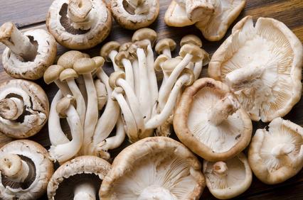 eating clean mushrooms
