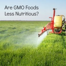 Do You Think Genetically Modified Food Is Safe To Eat