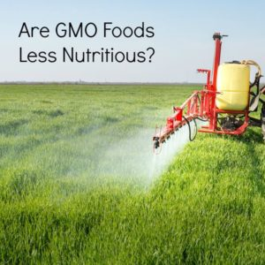 Is Genetically Modified Food Still Nutritious? Is it Safe?