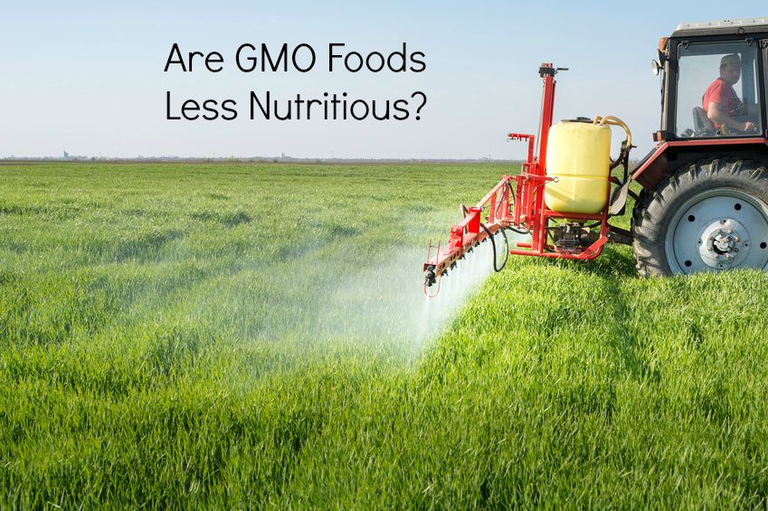 Genetically_Modified_Food