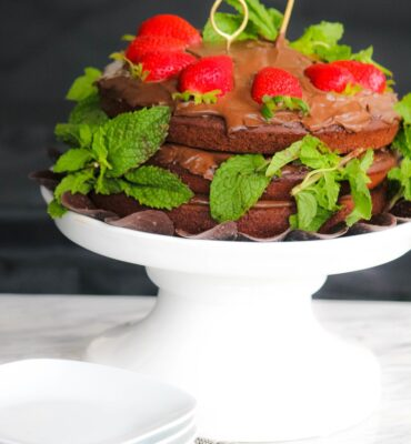 Naked Healthy Chocolate Cake Recipe with Mint