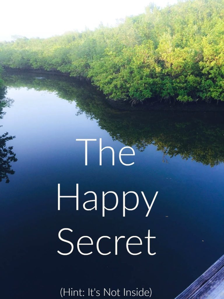 The Happy Secret
