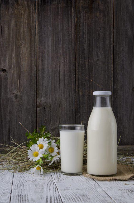 milk alternatives 2