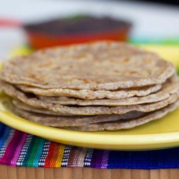 The Best Gluten Free / Grain Free Tortilla Recipe