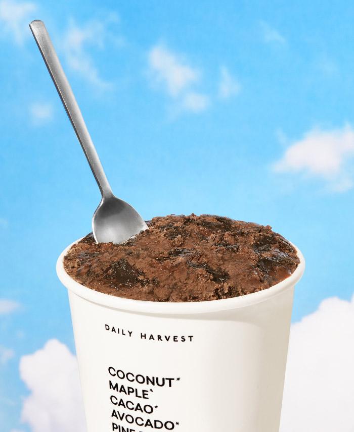 DAILY HARVEST SCOOPS CHOCOLATE + OOEY GOOEY MIDNIGHT FUDGE