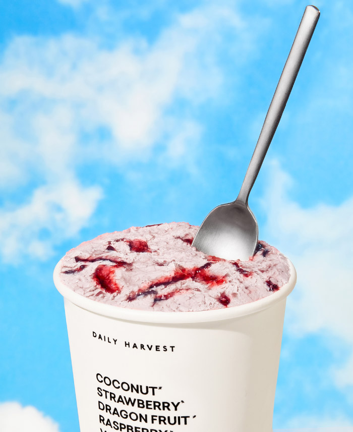 DAILY HARVEST SCOOPS STRAWBERRY + RICH RIPPLED BERRY COMPOTE
